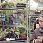 Psychopatyczne atrakcje turystyczne: Targ kwiatów na Columbia Road