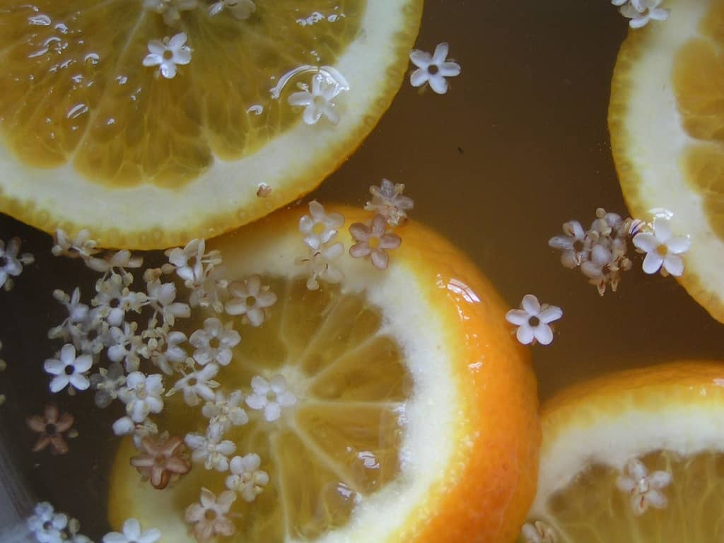 Elderflowercordial